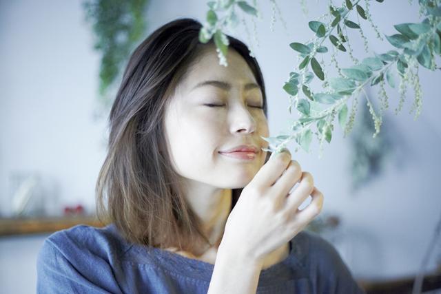 酢酸リナリルが持つ睡眠にもたらす効果とは?